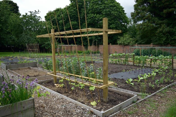 FE Kitchen garden